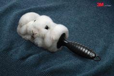 3M Lint Roller: Rabbit. kkkk nais ou menos assim que deveria ser! Por isso ñ tenho animais de estimaçao! Mas agora... vou pensar! rs Grande montagem!