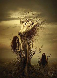 mystic, fantasi, art, dark, trees, fairi, fantasy creatures, tree of life, nymph
