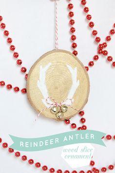 Reindeer Antler Wood