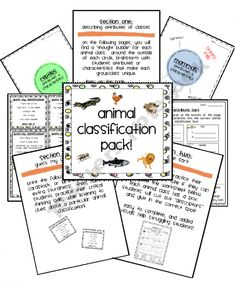 Animal Classification Pack- Describing the 6 Animal Classes!