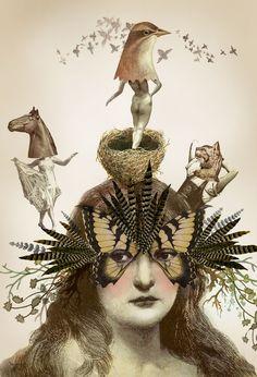 Elisabeth Haidle Illustration #illustration #art