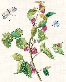 Raspberries and Butterflies, from DMC Club.