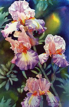 """""""Elizabeth's Iris"""" by Mary Sorrows Hughes"""