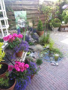 Leuke tuin ideeen on pinterest tuin concrete fire pits and potting benches - Tuin ideeen ...