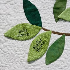 family tree quilt | Family Tree Quilt Detail | Flickr - Photo Sharing!
