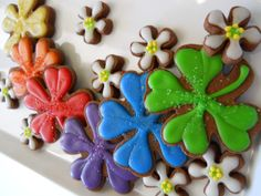 Rainbow Glazed Shamrock Cookies by Robin Traversy {The Cookie Faerie}