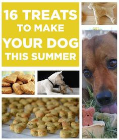 Treats for the pupcake, to make this summer!!