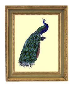 peacock print for dining room