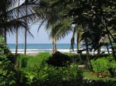 Housesit view from Top Verandah.  Medium Long Term From Apr 1, 2014 For 2 to 3 months I need pet care for: Dogs,Cats    House Sitter Needed for scalon320  Location Cahuita, Beach, Cahuita   Costa Rica Availability Apr 1,2014  For 2 to 3 months | Medium Long Term  Not a member? Join today to contact homeowner scalon320  We have 2 story beach house with veranda overlooking the Caribbean Ocean.Its 150 meters from the beach on 1 acre of groomed jungle with a assortment of wildlife such ...