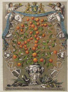 """""""Stamboom der Versten iut het Hius Oranje-Nassau, van Willem du Oude... tot Z. M. Willem III."""". Farblithographie von Entrik & Dinger nach J. M. Stalk, Schiedam ca. 1874."""