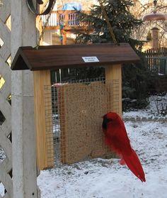 Bread bird feeder