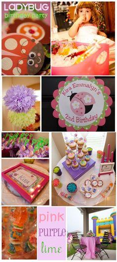 little lady - ladybug birthday party