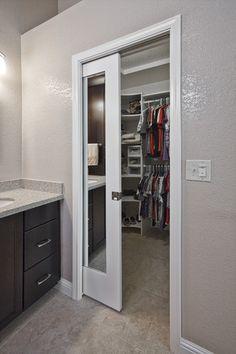 Mirrored pocket door