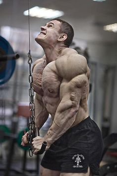Get ripped if you want to. Don't complain about the results you didn't get because of the work you didn't do.