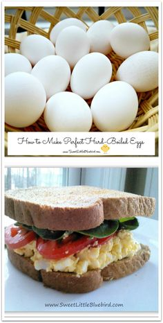 How to Make Perfect hard-Boiled Eggs!!!  Plus egg salad recipes...