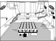 Diy hydroponic and aquaponic gardens on pinterest for Indoor gardening ventilation system