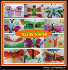 Tissue Paper Butterfly 'Sun-Catchers' by First Graders
