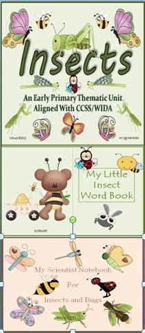 This thematic unit on insects is an all inclusive resource for the early primary classroom. This unit will help you infuse the insect theme into all subject areas across the primary curriculum. Your children will learn science content concepts about insects through math activities, writing, poetry, scientist notebooks, scientific observations, and art projects. Enjoy teaching this beautifully designed thematic unit!