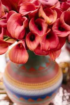 Orange Red Orchids in Santa Fe Clay Pot