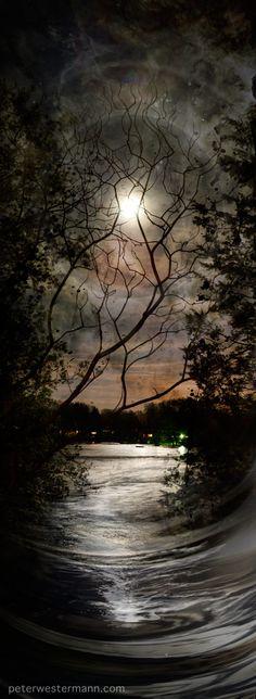 Nocturnal ‹ Peter Westermann