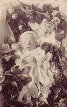A real photo postcard, probably American, showing a baby with flowers and leaves arranged around its body.    Photographer and location unidentified.