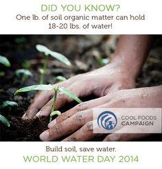 Soil = Water's best friend!