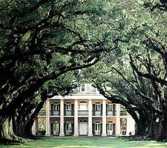 southern style plantations   trees alot of houses in the south have a plantation like type of look ...
