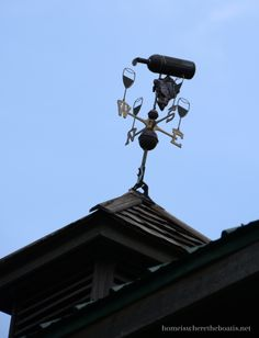 bottl weather, weather vane, wine bottles