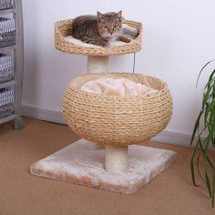 Pet Pals Eco Friendly Double Nesting Cat Condo - PetSmart