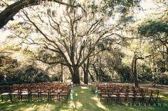 Wadmalaw Island Wedding