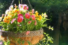 Sweet idea for making hanging baskets with kids by @Alice Art -- perfect for a Mother's Day gift!