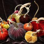 Top 10 Favorite Creative Pumpkins
