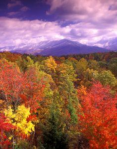 Early snow in autumn, Smokey Mountains, TN.