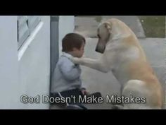 The sweetest video ever!!! Sweet Mama Dog Interacting with a Beautiful Child with Down Syndrome ♥