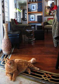 Floors :: Gina Suska's clipboard on Hometalk