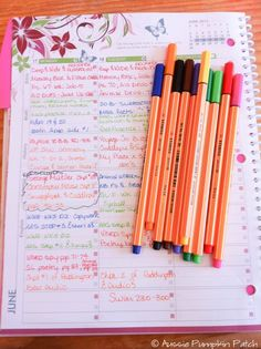 Well Planned Day Family Homeschool Planner (with giveaway!) and how Kendra at Aussie Pumpkin Patch uses it and adapts it for her family