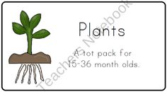 Plants Tot Pack from LittleAdventuresPreschool on TeachersNotebook.com (27 pages)
