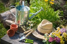 Gardening Tips from Yesteryear | Stretcher.com - Less expensive and a heap more fun!