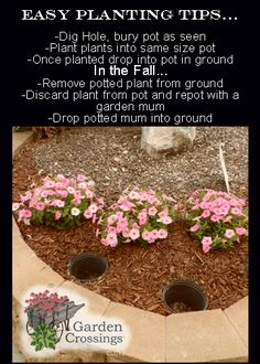 Easy planting tip