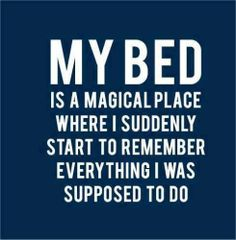 My bed is a magical place..