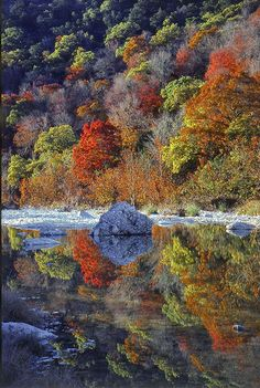 Fall Foliage at Lost Maples State Park, Texas