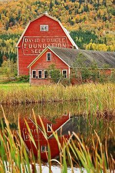 Barn reflection...
