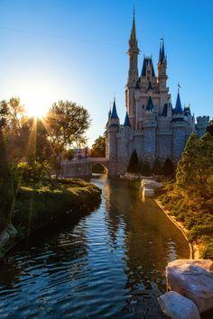 I love this photo of Cinderella's Castle.