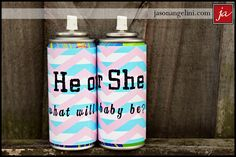 "Silly string ""He or She:  what will baby be?"" gender reveal ""I love this idea"" Then we spray each other:) What a great photo that will be!!!"