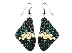 Real Butterfly Wing Earrings Hammadryas by MyRealButterfly on Etsy, $12.00