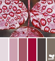 autumn dew - reds and browns and soft pinks.... our bedroom colours!