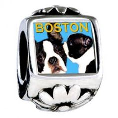 Boston Terrier Photo European Charms  Fit pandora,trollbeads,chamilia,biagi and any customized bracelet/necklaces. #Jewelry #Fashion #Silver# handcraft #DIY #Accessory