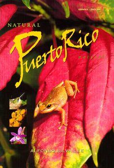 isla puerto, puerto rico, frog speci, tree frog, coqui, natur puerto, place, mi isla, island
