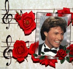 MUSICAL FLOWERS Was a beautiful liontiger stud, a real babe!! Andy Gibb!! Susan Ansley here in New Zealand.
