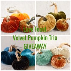 Enter to Win a Velve